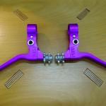 paul_canti_purple_1