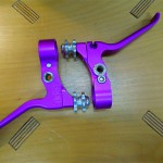 paul_canti_purple_2