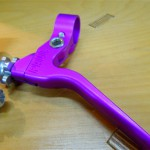 paul_canti_purple_7