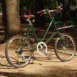 12-ebs-leaf-green-4