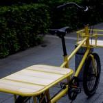 ebs_workbike_kangoo[6]