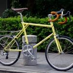 ebs_float451r_yellow[6]