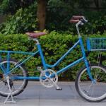 ebs_leaflong_blue