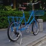 ebs_leaflong_blue[13]