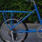 ebs_leaflong_blue[5]
