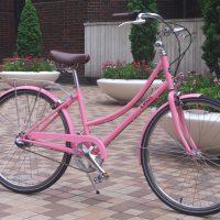 linus Dutchi-3 pink