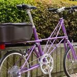 11-moulton-tsr9-purple4