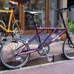 09-tyrell-sv-purple4