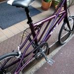 09-tyrell-sv-purple6