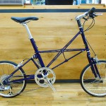moulton_midnight_01