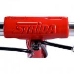 STRIDA_4_c_2_big