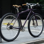 11-surly-karate-custom4