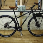 surly_2012_karate_400