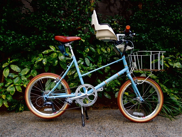 BRUNO / MIXTE20 + bobike mini+
