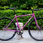 surly_straggler_single[1]