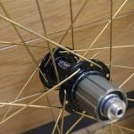 wheel_tni_gold