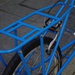 ebs_leaflong_blue[11]