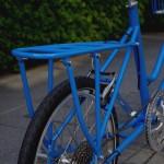 ebs_leaflong_blue[14]