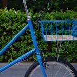 ebs_leaflong_blue[2]