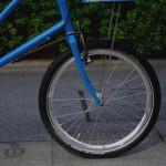 ebs_leaflong_blue[3]