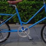 ebs_leaflong_blue[7]