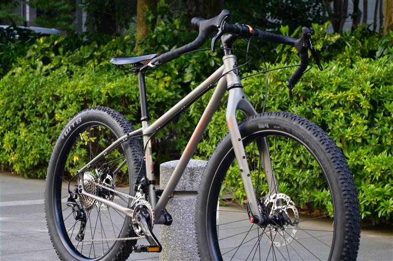 SALSA CYCLES / 2017 FARGO 650B CUSTOM